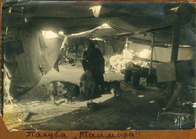 18 На палубе ''Таймыра'' (из архива Евгеновых)